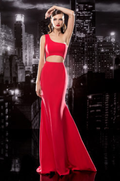 One Shoulder Gown with Cut Out Bodice